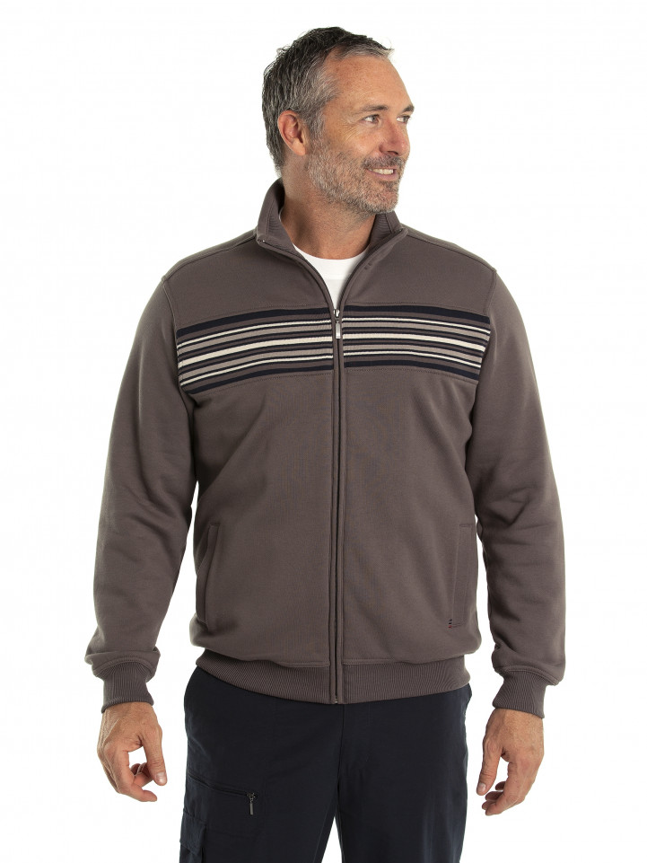 Dex Snowy Mt Fleece Jacket